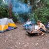 Platypus Bay Creek Camp