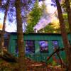 Autumn Colours! Cosy Canoe Cottage