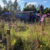 The Long Creek Backwoods Bus