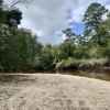 Ohoopee River Private Sandbar