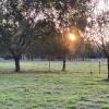 BOHO Wilderness Noosa farm by lake