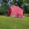 Smore's Little Farm