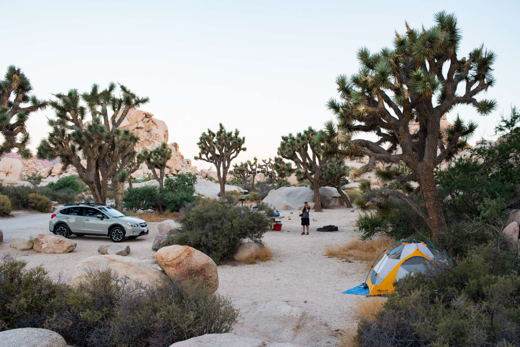 Hidden Valley Campground, Joshua Tree National Park